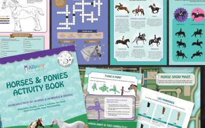 Horses & Ponies Activity Book *5 Star* Book Review