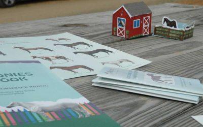 The Horses & Ponies Activity Book Earns 2018 Academics' Choice Award