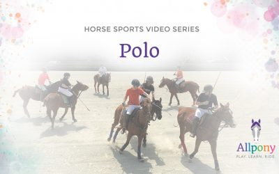 Allpony Horsemanship Video Series – Polo