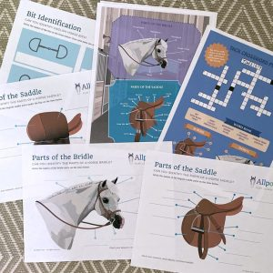 horse tack activity download