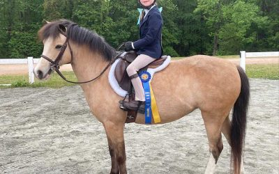 So Your Child Wants To Horse Show, Now What?